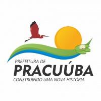 Web Rádio Pracuúba FM