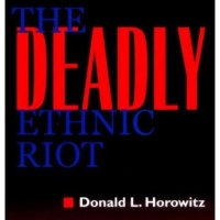 ethnic conflicts with Dr. Horowitz