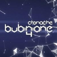 (Parte I) CronacheBubiniane4 - #06 del 30.12.2016