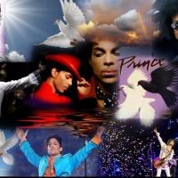 "Prince Jazz, Funk & Rockin ""The Mini Series"""