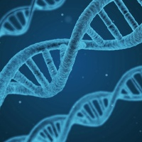 CRISPR – With Great Power Comes Great Responsibility