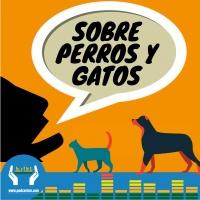 150 - Sobre loros y ponis...