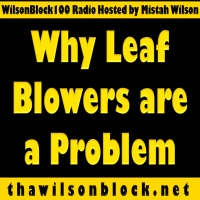 Why Leaf Blowers are a Problem