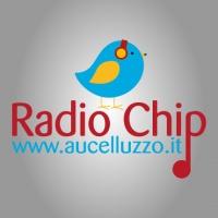 Radio Chip puntata n.5 / 2017