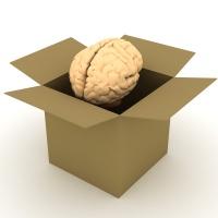La caja de irobe