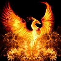 Episode 1: Rebirth/Phoenix Promo
