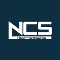 NoCopyrightSound 20
