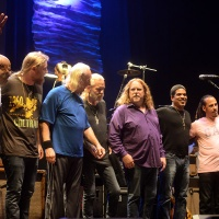 Shows To Go Ya - The Allman Brothers: The Final Show