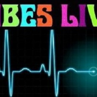 VIBES-LIVE EXCLUSIVES - AUTHOR LINDA D. WATTLEY
