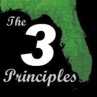 The Three Fundamental Principles