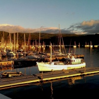 52 : At 6am we make our way to the ferry on the Bruny island safari tour