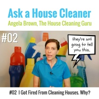 02 Why Did I Get Fired From House Cleaning
