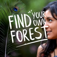 Find Your Own Forest