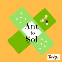 Ant to Sol
