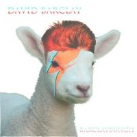 David Barclay (Barclaybunch)