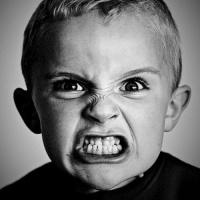 El miedo lleva a la ira, la ira lleva al odio, el odio lleva al sufrimiento