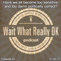 Have we all become too sensitive and too damn politically correct?