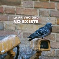 La privacidad no existe