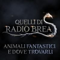 QDRB S6Ep07 - ANIMALI FANTASTICI E DOVE TROVARLI   Quelli ...