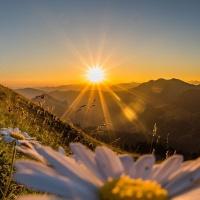 Buon inizio di giornata nelle alte vibrazioni! 😊✨💕