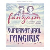 Indy Geek: Lynn Zubernis/Fangasm