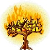 Consuming Fire Fellowship