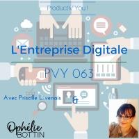 PVY063 Entreprise Digitale