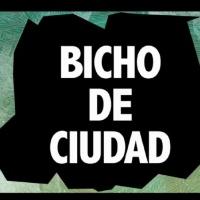 Bicho de Ciudad Radio