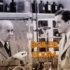 Boiler Room EP #105 - Quantum Swamp Chess