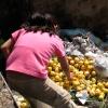 [HOY POR HOY] Desperdicio de comida en México