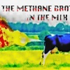 METHANE BROTHERS IN THE MIX