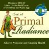 Best of Primal Radiance