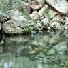 Programa 17 - Agua en Almería - 06-07-2017