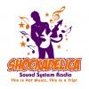 Shockadelica Sound System's show