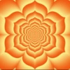 Integrate Your Shadow -2nd Chakra Meditation