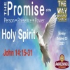 "John 14:15-31 ""Jesus Promises the Holy Spirit"""