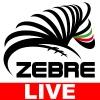 Zebre - Newport Gwent Dragons