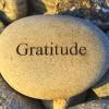 11/6/17: Gratitude