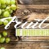 Bible Study Fruit Of Unforgiveness