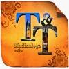 Territorios y Tesoros (T&T)