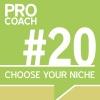 PC 020: Choose Your Perfect Niche