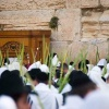 SUKKOT FIRST FRUITS NATIONS. NACIONES PRIMICIAS EN ISRAEL