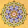 Abu Abdullah Albarghouthi's tracks