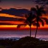 Kaua'i Beachwear