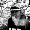 SMOKING GROOVES WITH DR DB KUSH