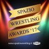 SPAZIO WRESTLING AWARDS 2017