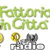 Fattoria in città 2016 - Vercelli