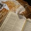 Jesus Speaks In Parables