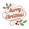 Teens 1.2 - Rozis Sevasteias School - Christmas Radio Show