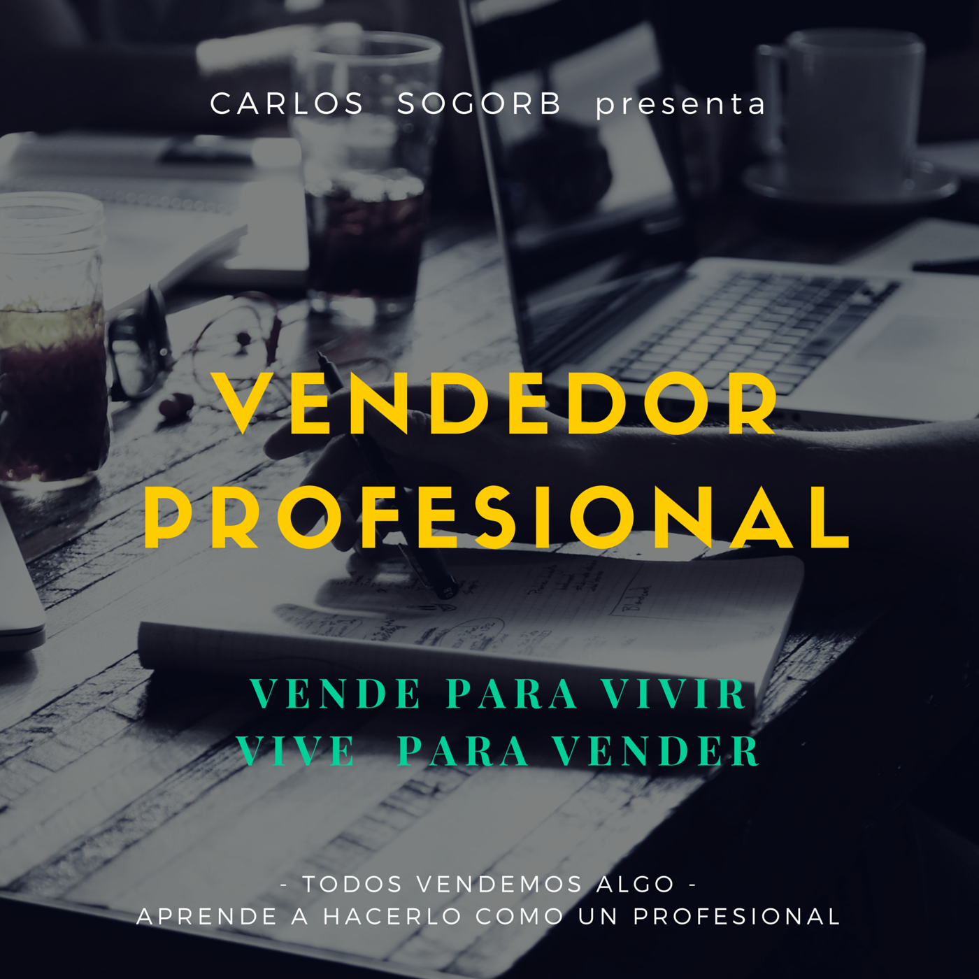 VENDEDOR PROFESIONAL